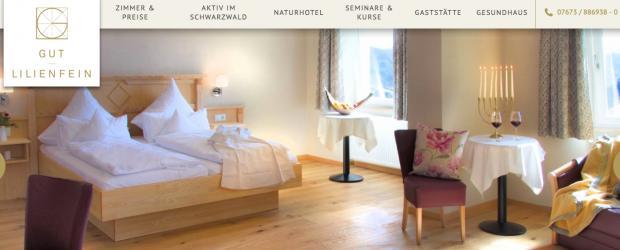 das gut lilienfein ein ideales reiseziel f r g ste aus der schweiz urlaubsblog. Black Bedroom Furniture Sets. Home Design Ideas